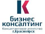 Логотип «Ника Бизкон» консалтинговое агентство